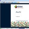 Gidel ProcFG – Zerif Technologies Ltd.